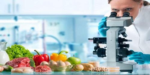 Gıda Güvenliği Nedir?